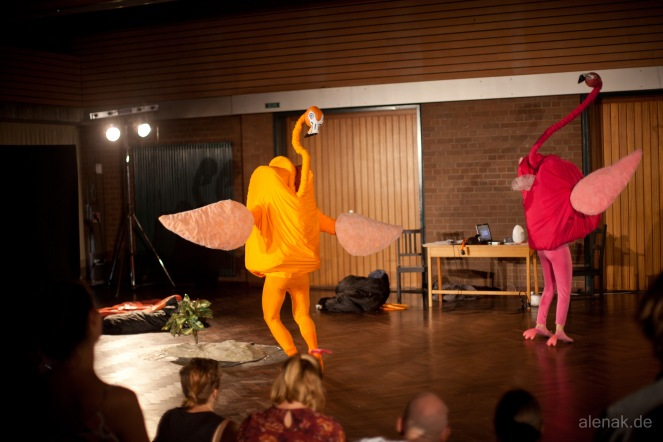 Flamingos das Musical - Tiere!