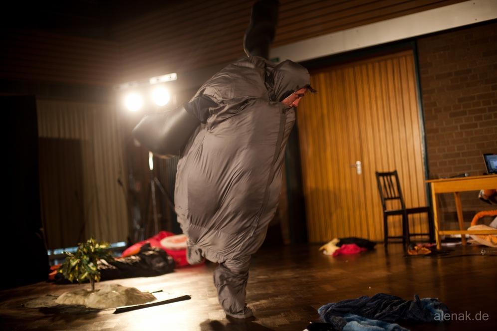 Die fette Robbe rastet aus - Tiere!